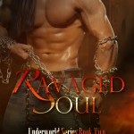 Ravaged Soul cover art image
